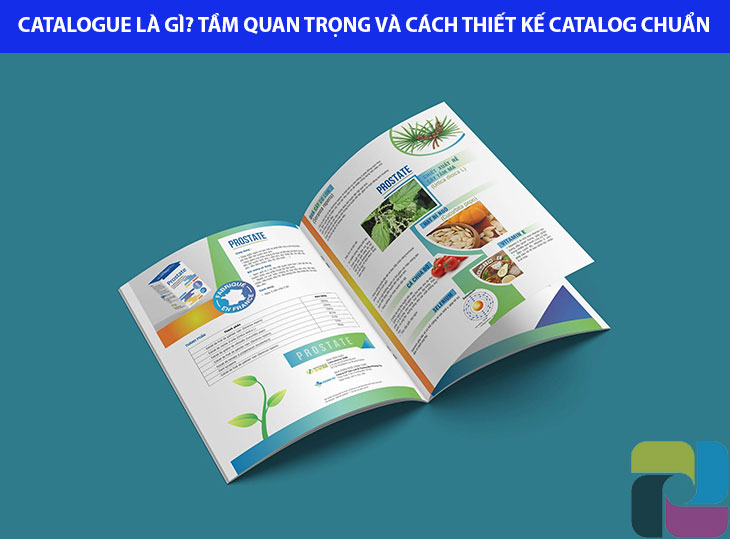 khái niệm catalogue